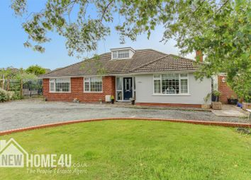 4 bed detached bungalow for sale in Chester Road, Buckley CH7