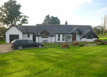 Thumbnail 2 bed detached bungalow to rent in Poundfield, Stratton, Cornwall
