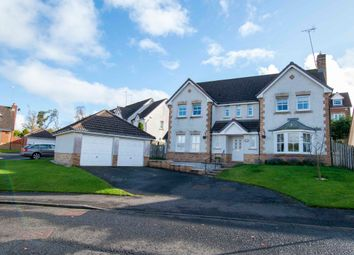 Thumbnail 4 bed detached house for sale in Cherrytree Wynd, East Kilbride