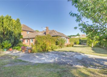 3 bed bungalow for sale in Honey End Lane, Reading, Berkshire RG30