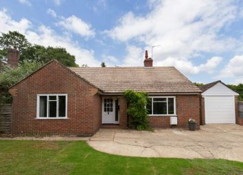 Thumbnail 3 bed bungalow to rent in Gasden Copse, Witley, Godalming