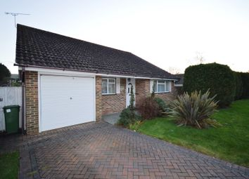 Thumbnail 3 bed detached bungalow to rent in Hormare Crescent, Storrington