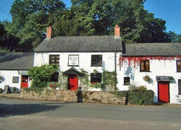 Thumbnail Pub/bar for sale in Bettws Newydd, Usk