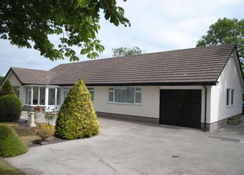Thumbnail 4 bed detached bungalow to rent in Rossett Road, Holt, Wrexham
