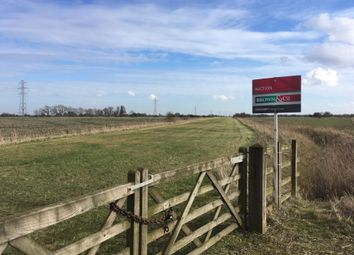 Thumbnail Land for sale in Cowbit, Spalding, Lincolnshire
