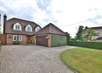 Thumbnail 4 bed detached house for sale in Cold Norton, Chelmsford, Essex