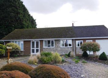 Thumbnail 2 bed bungalow to rent in Old Skellow Road, Old Skellow, Doncaster