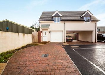 Thumbnail 2 bedroom detached house for sale in Paignton, Torbay, Devon