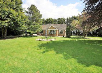 Thumbnail 4 bed detached bungalow for sale in Sandtoft Road, Hatfield, Doncaster