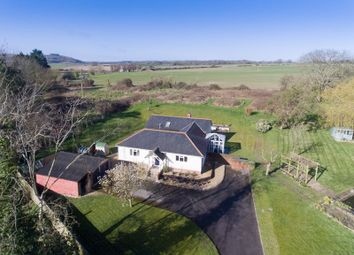 Thumbnail 4 bed detached bungalow for sale in Shaftesbury Road, Fovant, Salisbury