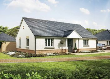 """Thumbnail 2 bedroom bungalow for sale in """"The Beechwood"""" at New Barn Lane, North Bersted, Bognor Regis"""