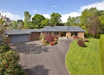 Thumbnail 4 bedroom bungalow for sale in Ford Lane, West Hill, Ottery St. Mary