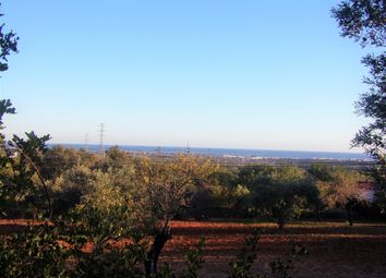 Thumbnail Land for sale in Faro, Algarve, Portugal