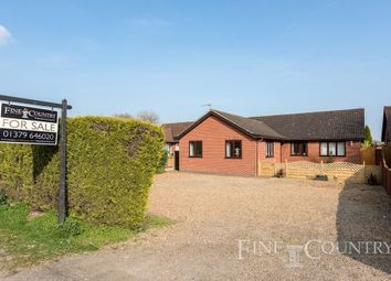 Thumbnail 4 bed detached bungalow for sale in Nordle Corner, Common Road, Bressingham, Diss
