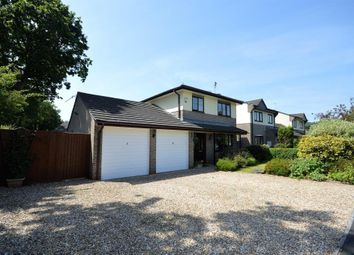 Thumbnail 4 bed detached house for sale in Shapley Way, Liverton, Newton Abbot, Devon