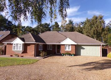 Thumbnail 4 bed bungalow for sale in St Leonards, Ringwood, .