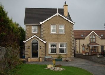 Thumbnail 4 bed detached house for sale in 8 New Road, Portavogie