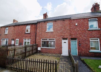 Thumbnail 2 bedroom terraced house to rent in Lime Terrace, Langley Park, Durham