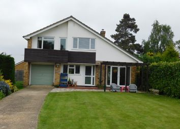 Thumbnail 3 bed detached house for sale in Danes Close, Stowmarket