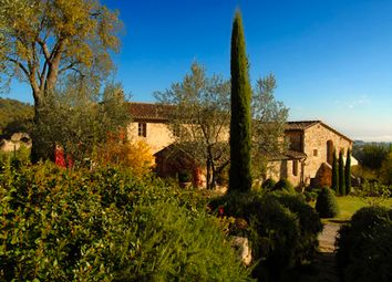 Thumbnail Farm for sale in Azienda Vitivinicola Le Tre Uve, Torrita di Siena, Tuscany, Italy