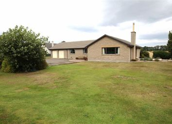 Thumbnail 4 bed detached bungalow for sale in Calcots, Elgin