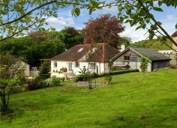 Whitford, Axminster, Devon EX13. 3 bed bungalow for sale