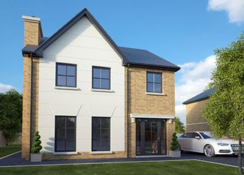 Thumbnail 3 bed detached house for sale in Lisnagrilly Hall, Portadown, Craigavon