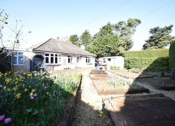 Thumbnail 4 bedroom detached bungalow for sale in Folly Road, Mildenhall, Bury St. Edmunds