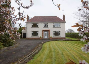 Thumbnail 4 bed detached house for sale in 17, Gilford Road, Craigavon