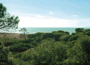 Thumbnail Land for sale in Vale Do Lobo Resort, Vale Do Lobo, 8135-864 Loulé, Portugal