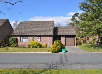 Thumbnail 2 bed detached bungalow to rent in Mayfield, Rowledge, Farnham