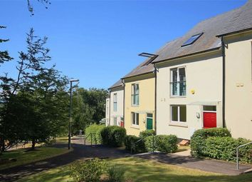 Thumbnail 3 bed terraced house for sale in St Marys Hill, St Mary's, Brixham