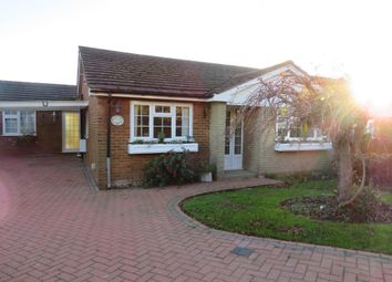 Thumbnail Bungalow to rent in Walnut Tree Lane, Westbere, Canterbury