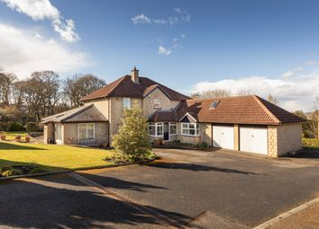 Thumbnail 5 bed detached house for sale in 8 Intake Way, Hexham, Northumberland