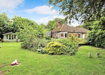 Thumbnail 3 bed detached bungalow for sale in Castle Street, Medstead, Hampshire