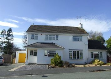 Thumbnail 3 bed detached house to rent in Caer Gog, Pantymwyn, Flintshire
