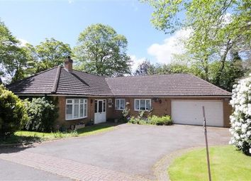 Thumbnail 3 bed detached bungalow for sale in Woodside, Four Oaks, Sutton Coldfield