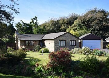 Thumbnail 4 bed detached bungalow for sale in Quarry Close, Bude