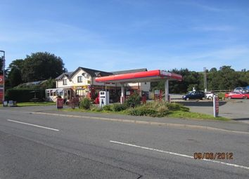 Thumbnail Commercial property for sale in Beulah, Llanwrtyd Wells