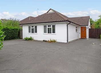 Thumbnail 3 bed detached bungalow for sale in Chignal Road, Chelmsford, Essex