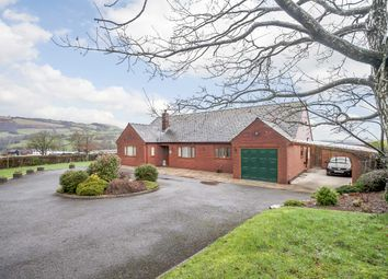 Thumbnail 3 bed bungalow for sale in Trefeglwys, Caersws, Powys