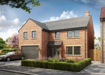 Thumbnail 5 bed detached house for sale in Beech Crescent, Heighington Village, Newton Aycliffe
