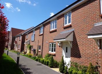 Thumbnail 3 bed terraced house to rent in Fraser Row, Fishbourne, Chichester