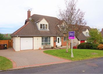 Thumbnail 4 bed detached house for sale in The Brackens, Newtownabbey