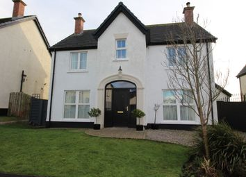 Thumbnail 4 bed detached house for sale in Ros-Na-Righ, Islandmagee, Larne
