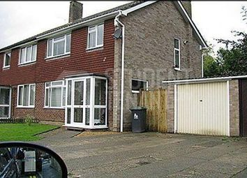 Thumbnail 4 bed semi-detached house to rent in Ramsey Close, Canterbury