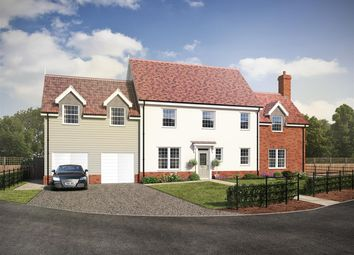 Thumbnail 5 bedroom detached house for sale in Hollies, Ipswich, Ipswich