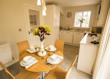 "Thumbnail 3 bedroom semi-detached house for sale in ""The Hanbury"" at Fir Tree Lane, Hetton-Le-Hole, Houghton Le Spring"