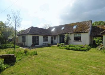 Thumbnail Semi-detached house to rent in Ningwood Hill, Cranmore, Yarmouth