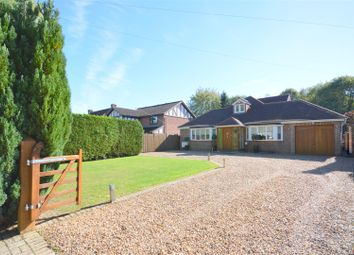 Thumbnail 4 bedroom detached bungalow for sale in Green Lane, Lower Kingswood, Tadworth